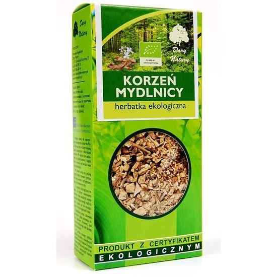 Obrazek Dary Natury   Herbatka ekologiczna KORZEŃ MYDLNICY 100g